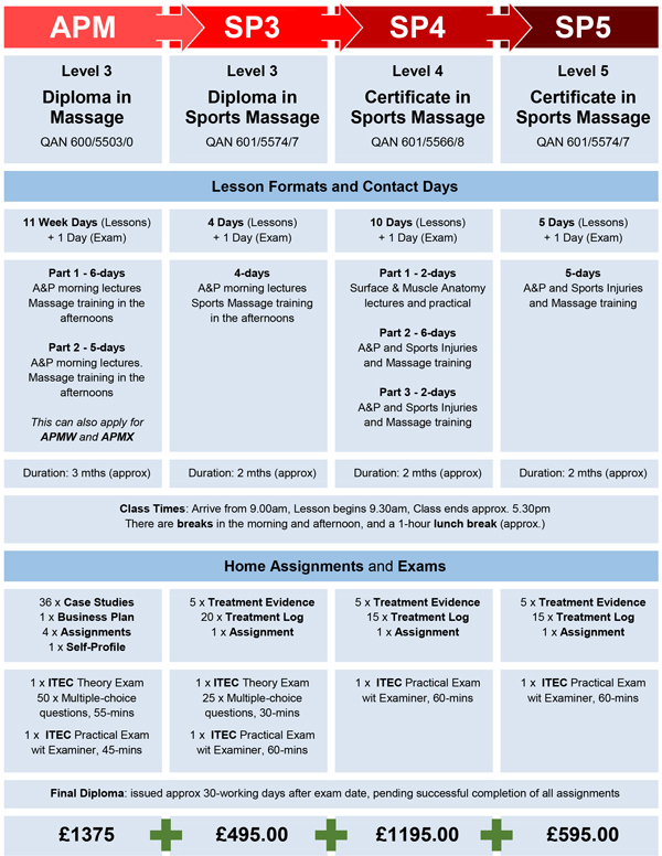 Sports Massage Training Course